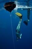 De aanvang van de vrije duikvlucht Stock Afbeelding