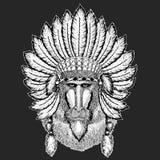 De aap, baviaan, hond-aap, imiteert het Traditionele etnische Indische van de de medicijnmanhoed van het bohohoofddeksel Stammen  royalty-vrije illustratie