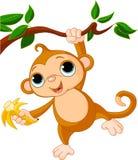 De aap van de baby op een boom