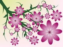 De aard bloeit achtergrond Stock Fotografie