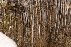 De aard is een kunstenaar in Val David royalty-vrije stock fotografie