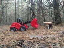 De aard, graafwerktuig en schiet de rode kleur is altijd in de tendens als paddestoelen uit de grond stock afbeeldingen