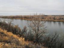 De aard lange levende Herfst stock fotografie