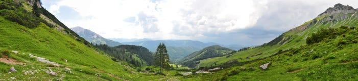 De aard van alpen Royalty-vrije Stock Foto