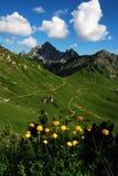 De aard van bergen Stock Foto's