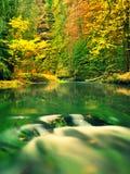 De aard van de herfst Lange schaduwen en blauwe hemel Bergrivier met low level van water, kleurrijke bladeren stock afbeelding