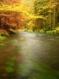 De aard van de herfst Lange schaduwen en blauwe hemel Bergrivier met low level van water, kleurrijke bladeren in bos stock foto's