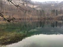 De aard van de het landschapsboom van de meerberg Stock Foto's