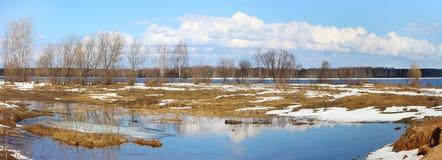 De aard van de lente, panoramisch landschap stock foto