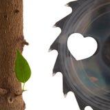 De aard van de liefde Stock Foto's
