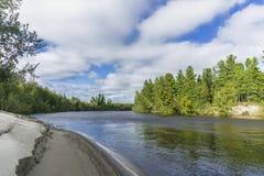 De aard van de rivieryagenetta van het de zomerlandschap van het Verre Noorden Stock Afbeeldingen