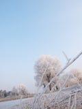 De aard van de winter Stock Afbeelding