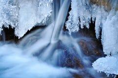 De aard van de winter Stock Foto