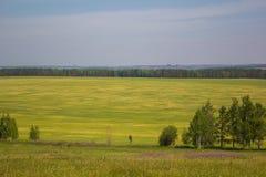De aard van de zon van de het gebiedshemel van Siberië Royalty-vrije Stock Foto