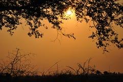 De Aard van de zonneschijn Stock Foto's