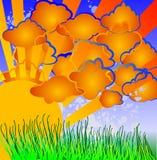 De Aard van het beeldverhaal - Zon, Wolken, Gras. Stock Foto