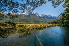 De aard van spiegelmeer, Nieuw Zeeland Stock Afbeeldingen