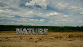 De Aard van de steeninschrijving Bescherm het milieu 47 stock video