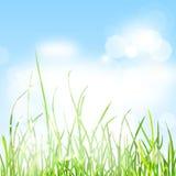 De aardachtergrond van de lente Stock Afbeelding