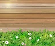 De aardachtergrond van de lente Groene gras en bladinstallatie, Witte Gerbera, Daisy bloemen en zonlicht over houten omheining stock illustratie