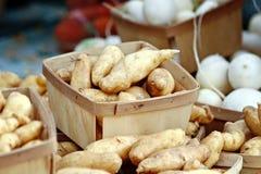 De Aardappels van de jonge vis Stock Afbeelding