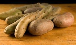 De aardappels van de jonge vis Royalty-vrije Stock Afbeelding