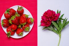 De aardbei bloeit pioenen royalty-vrije stock afbeelding