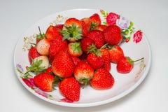 De aardbeien in schotel, witte achtergrond, slect concentreren zich bij strawberrie Stock Foto's