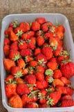 De aardbeien sluiten omhoog Achtergrond royalty-vrije stock afbeelding