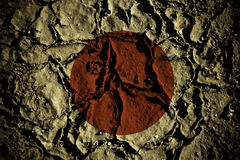 De aardbeving van Japan Stock Fotografie