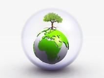 De aarde en de boom Stock Afbeeldingen