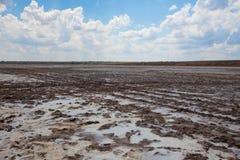 De aarde van de modder Stock Foto's
