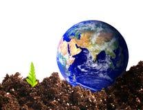 De aarde van Ecologial Stock Fotografie
