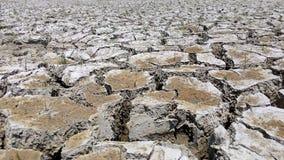 De aardetextuur van landdroogte de grondgrond barst en geen watergebrek aan vochtigheid in droog heet weer Stock Foto