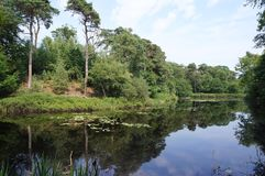 De aardgebied van Vughtseheide in Nederland stock afbeelding