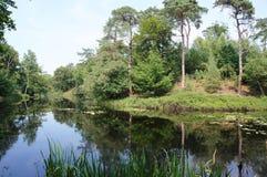 De aardgebied van Vughtseheide in Nederland royalty-vrije stock afbeeldingen