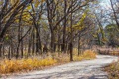 De aardpark van Martin in de herfst stock foto's