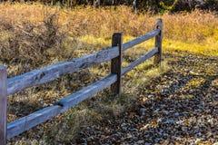 De aardpark van Martin in de herfst stock foto