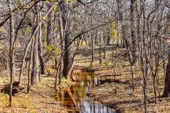 De aardpark van Martin in de herfst stock afbeeldingen