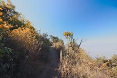 De aardsleep van Kewmae pan bij natuonalpark van Doi Inthanon, Chaingmai, Thailand stock afbeelding