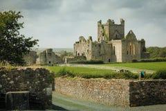 De Abdij van Dunbrody provincie Wexford ierland royalty-vrije stock fotografie