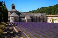 De abdij van Senanque van de lavendeladvertentie Royalty-vrije Stock Foto's