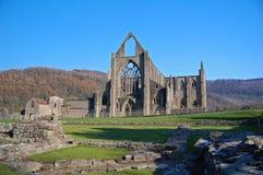 De abdij van Tintern Royalty-vrije Stock Foto