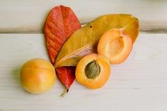 De abrikozen in witte kom met hand schilderden bladeren Stock Afbeeldingen