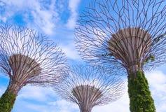 6 de abril de 2014: Jardins pela baía, Singapura Imagem de Stock