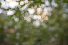 De Abstracte Achtergrond van Bokeh stock foto