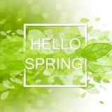 De Abstracte Achtergrond van de lente Stock Foto's