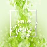 De Abstracte Achtergrond van de lente Stock Afbeeldingen