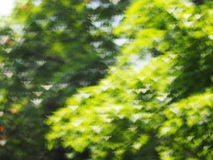De abstracte achtergrond van de lichtenluxe bokeh Royalty-vrije Stock Foto