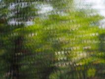 De abstracte achtergrond van de lichtenluxe bokeh Stock Fotografie